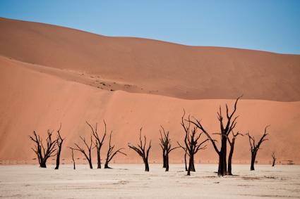 220211_1877_namibia